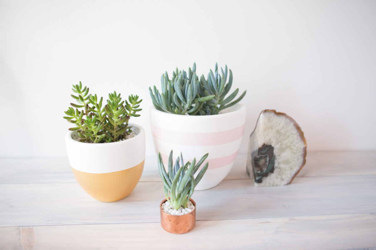 MrKate_Reveal_Hello_OfficeGoals_Blog (75 of 101)
