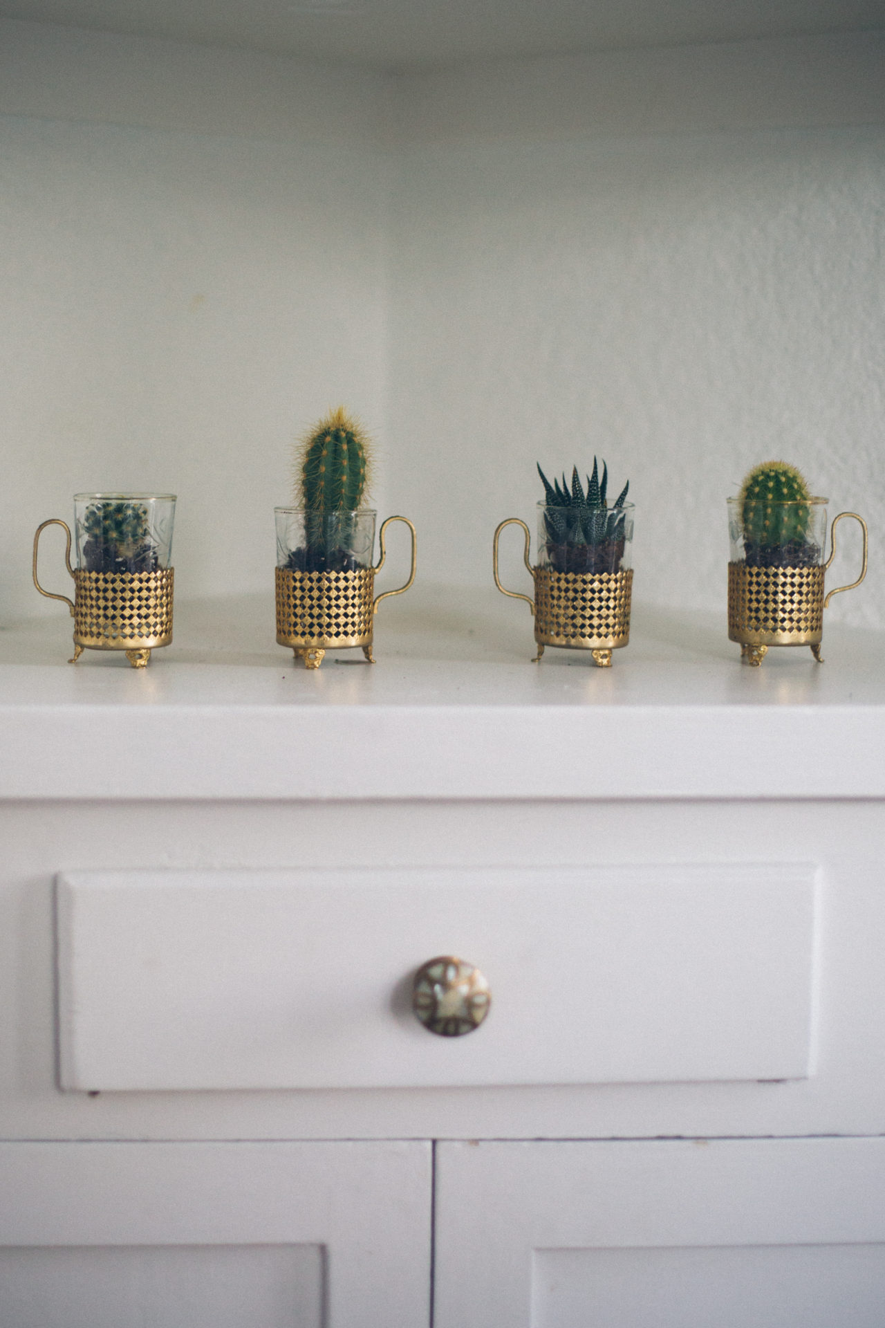 MrKate_Bouquet_of_The_Month_Cacti_Mini-7656