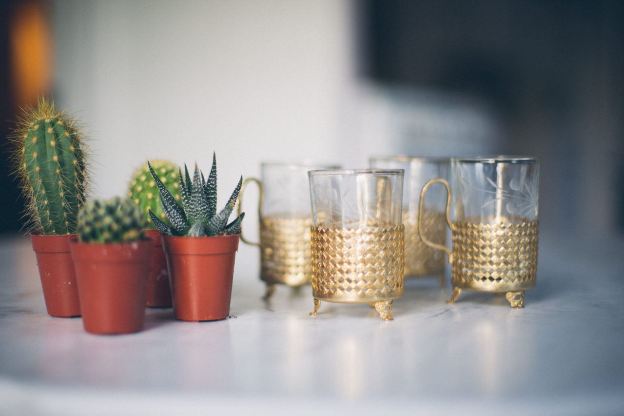 MrKate_Bouquet_of_The_Month_Cacti_Mini-8