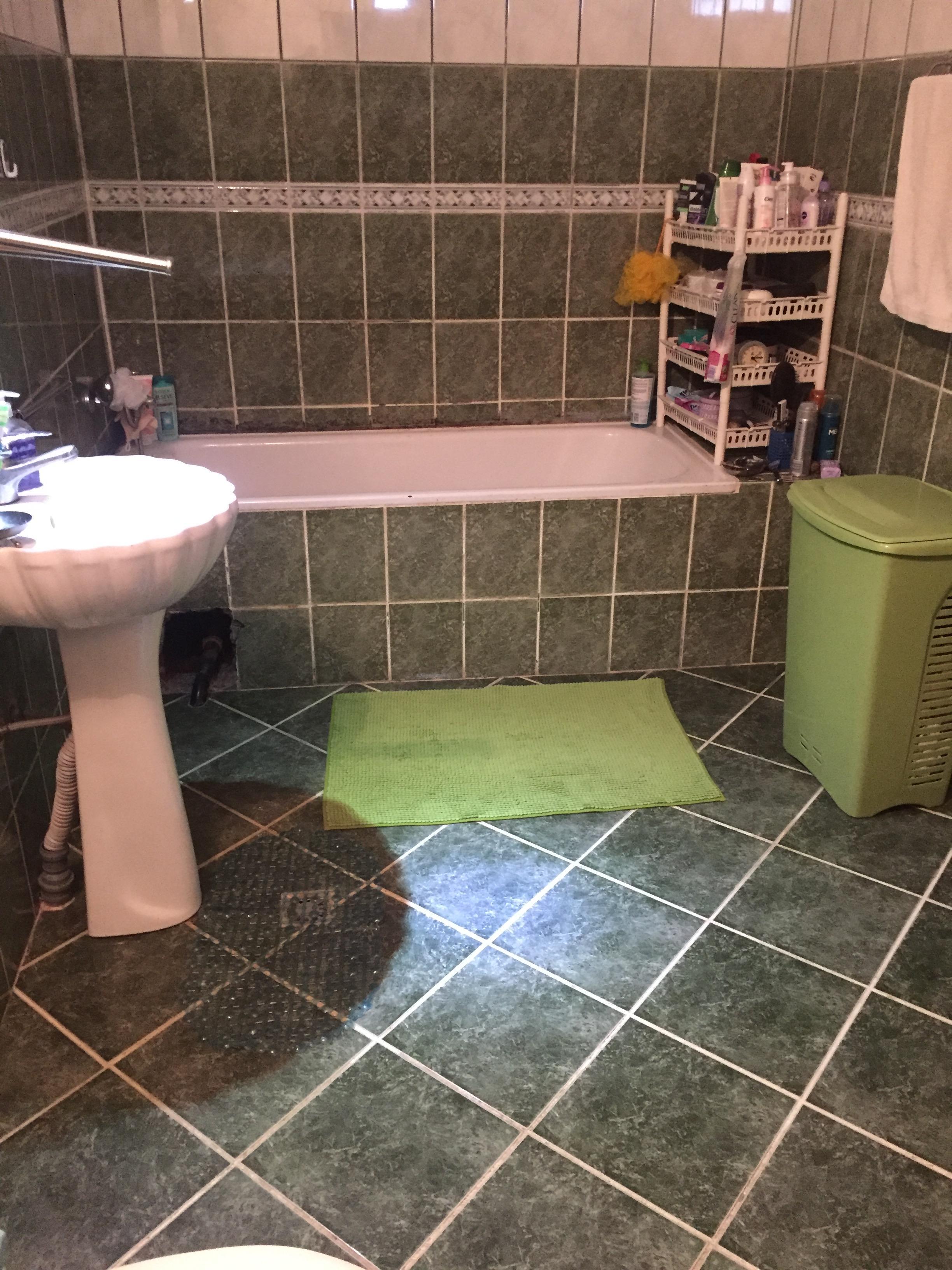 thisbathroomneedshelp2